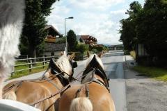 Chlausgesellschaft.ch Neuenhof Ausflug 2013 Muenster Tirol Hauserwirt & Kutschenfahrt (10)
