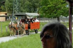Chlausgesellschaft.ch Neuenhof Ausflug 2013 Muenster Tirol Hauserwirt & Kutschenfahrt (13)
