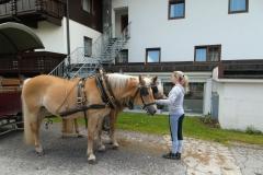 Chlausgesellschaft.ch Neuenhof Ausflug 2013 Muenster Tirol Hauserwirt & Kutschenfahrt (21)