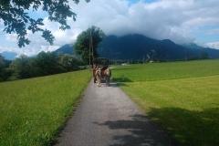 Chlausgesellschaft.ch Neuenhof Ausflug 2013 Muenster Tirol Hauserwirt & Kutschenfahrt (39)
